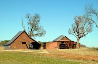 Пошаговое строительство деревянного сарая